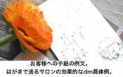 お客様への手紙の例文。はがきで送るサロンの効果的なdm具体例
