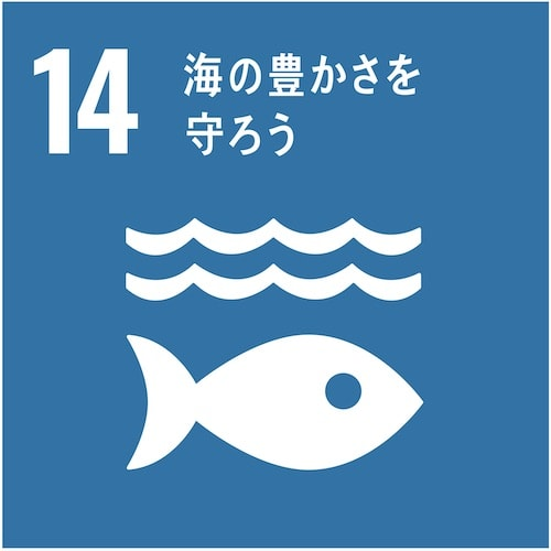 sdgsを美容室に目標14「海の豊かさを守ろう」